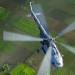 IAF15-crop