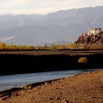 Ladakh15