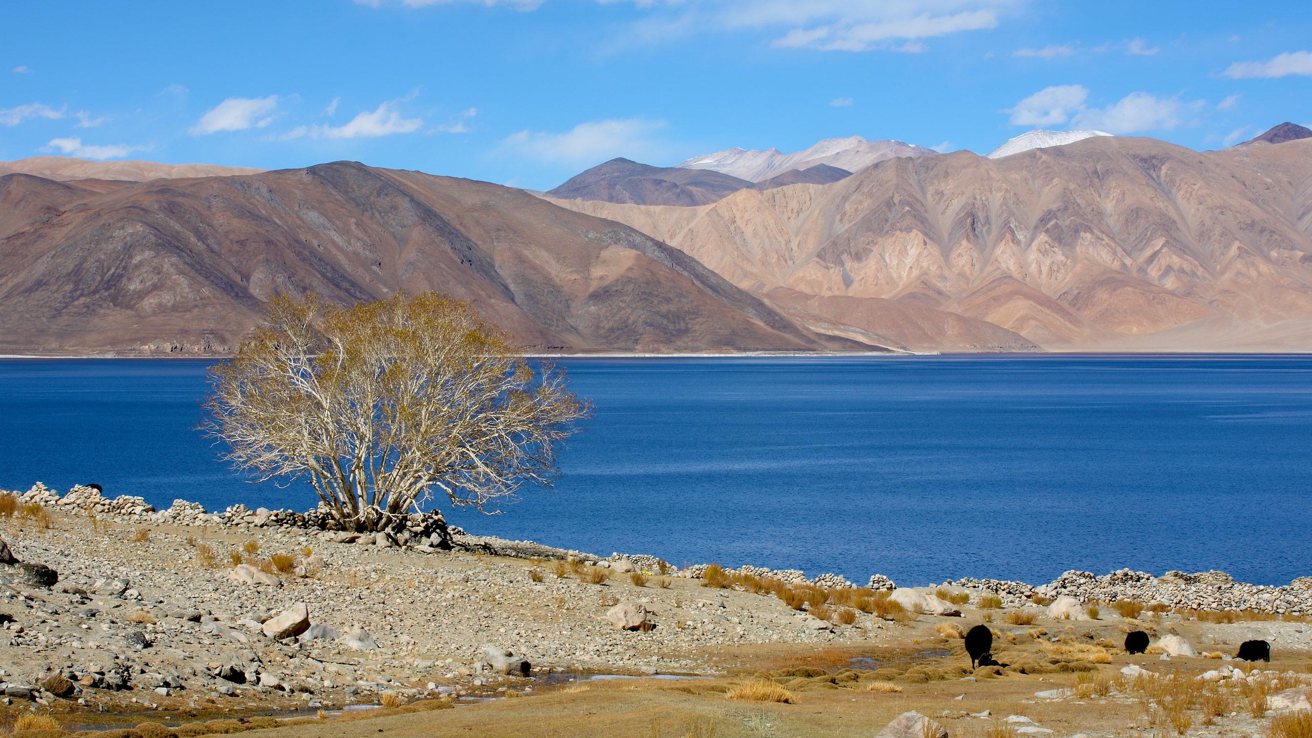 Ladakh Siachen Sunil Jain